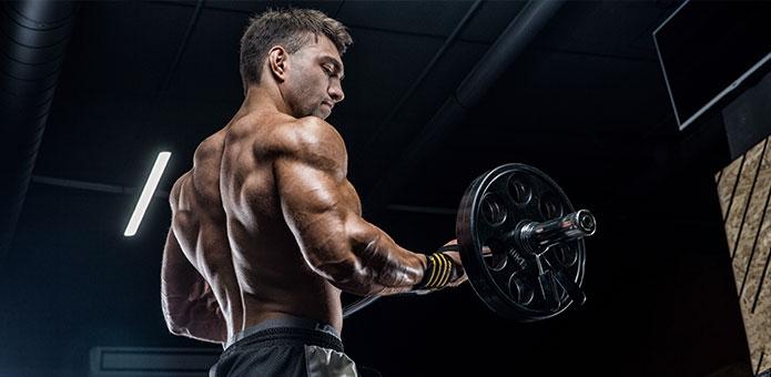 como ganhar massa muscular com treino