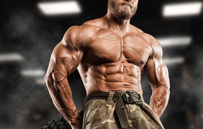 Como Ganhar Massa Muscular: Nutrição, Treino e Suplementação